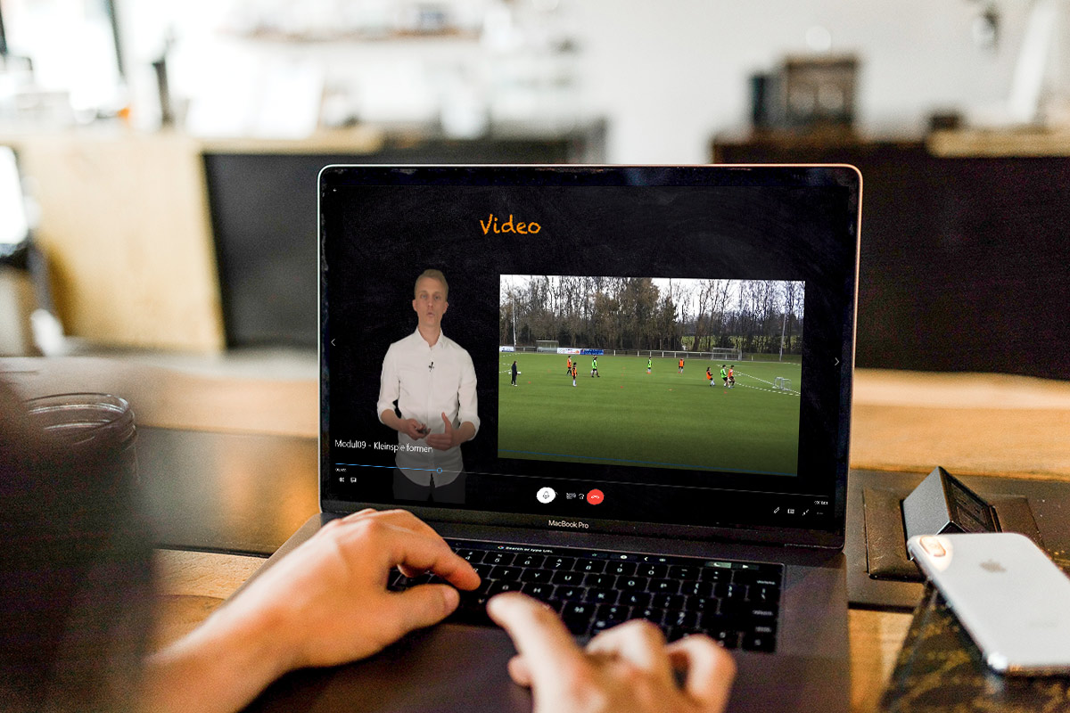 Coach², 60 Minuten Seminar per Livestream über Skype.